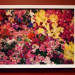 Marilyn SchneiderIkea Flowers, 2013digital print, Ikea frame