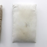 Untitled (for wall) #3, 2015sweat, dirt, pillow, saliva, hair, pencil, alcohol