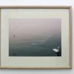 Lake como  C type photograph, framedLucy Merrett, 1999