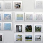 three hundred and sixty six366 square prints, each 12.5cmWaratah Lahy
